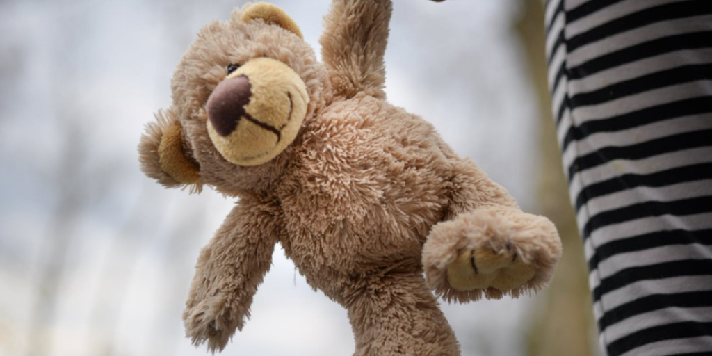 teddy bear held by a person