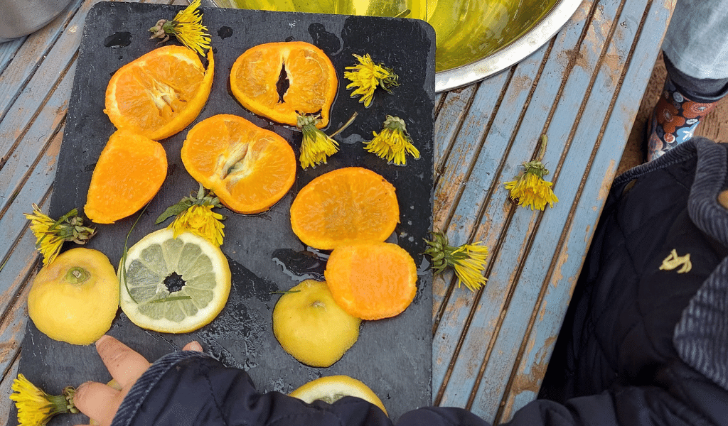 dandelions with citrus fruits on table
