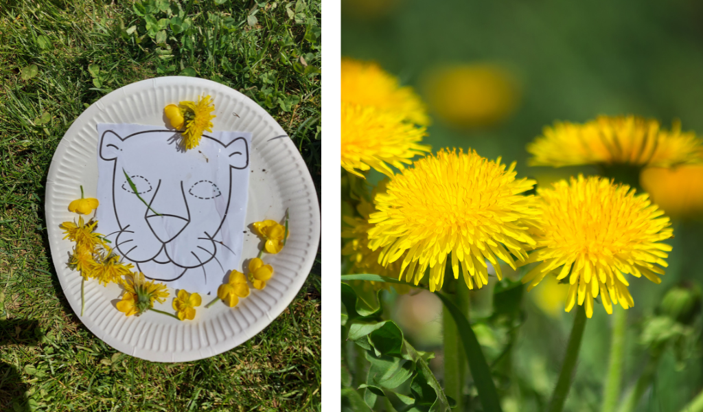 paper plate with lion drawing and dandilions